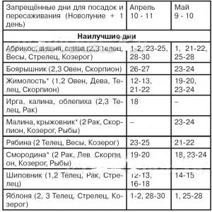 kalendar-2