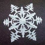 snowflake1(1)