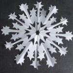 snowflake5(5)